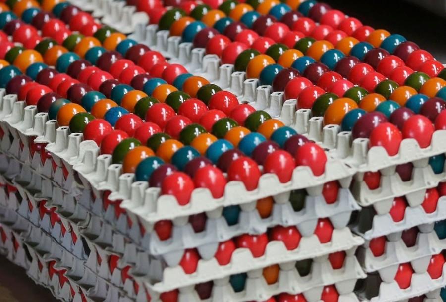 Pengepakan telur berwarna